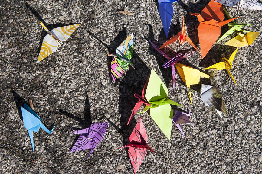 Origami cranes on the pavement outside a gate to the Indian Point Energy Center.