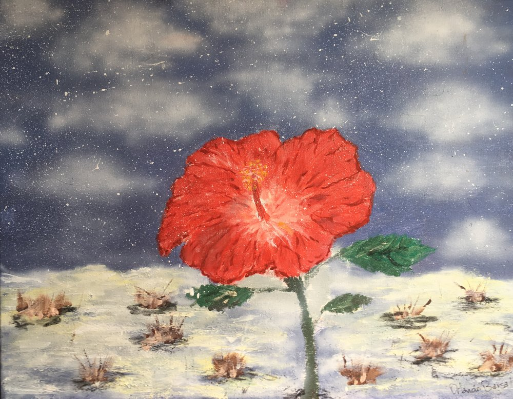 El Papo en Invierno Hibiscus in Winter