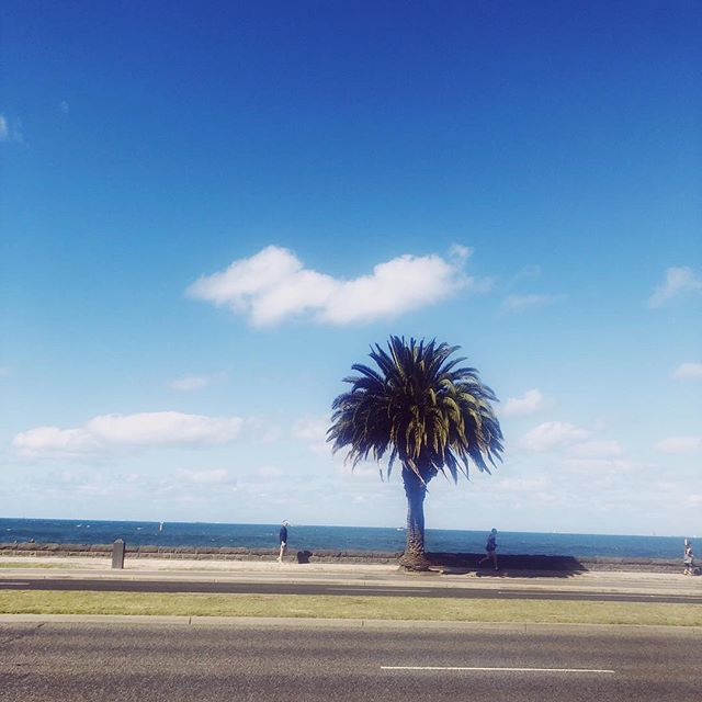 St kilda beach 🏖 have you been for a run here?! ⠀ ⠀ It's flat and fast with a lovey view of the beach also good for people watching 😜⠀ ⠀