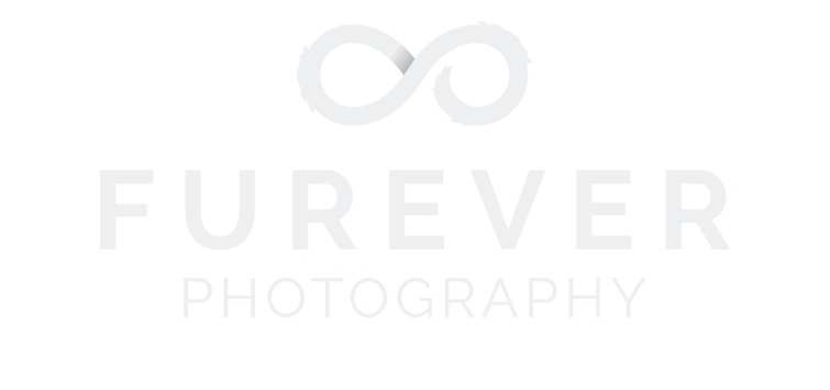 FUREVER Photography