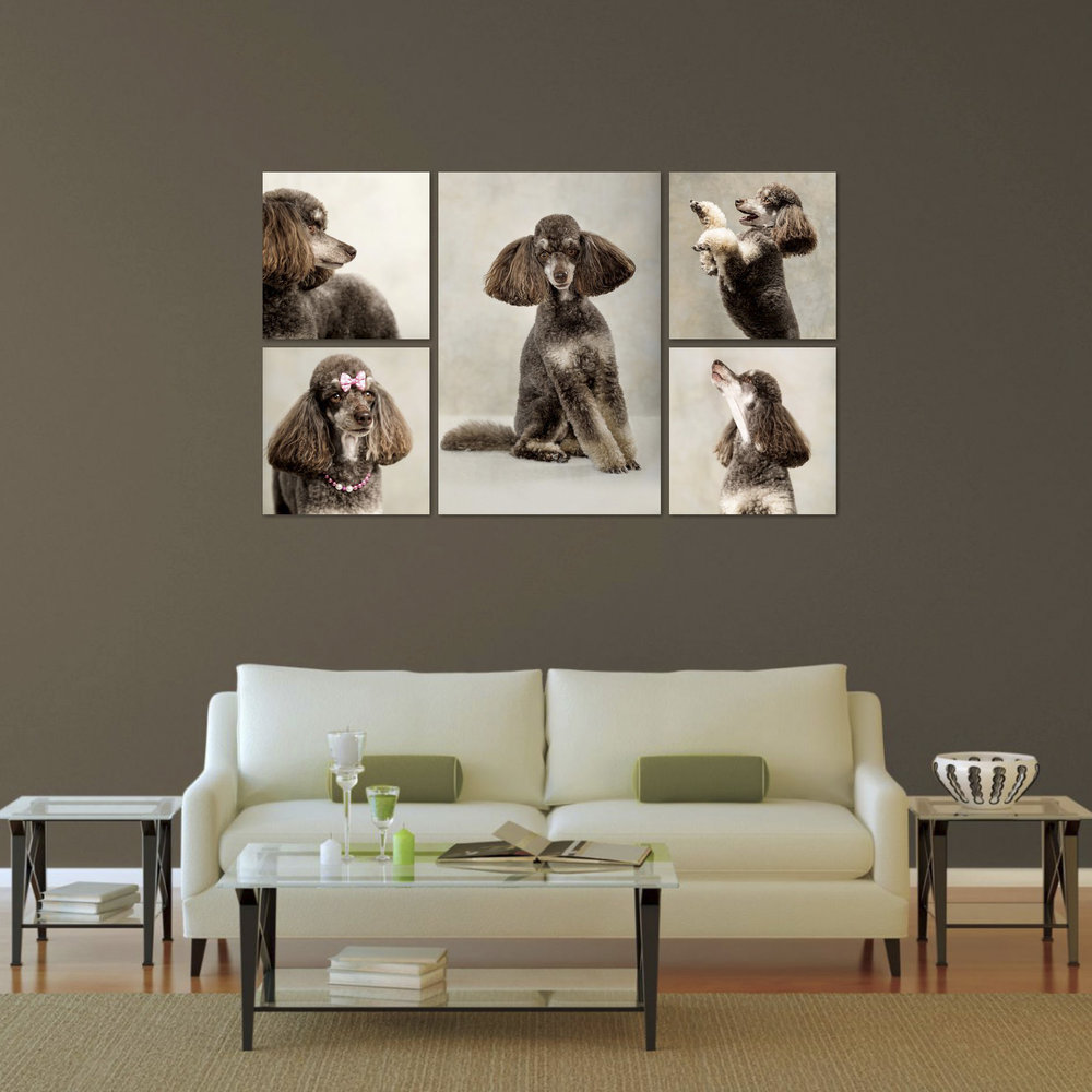 Wall_Art_Poodle_Dog_Portait_Furever.jpg