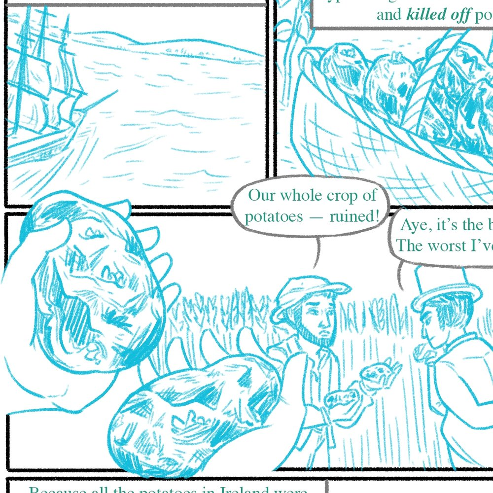 Teeny preview of some pencils; look at those appetizing potatoes.