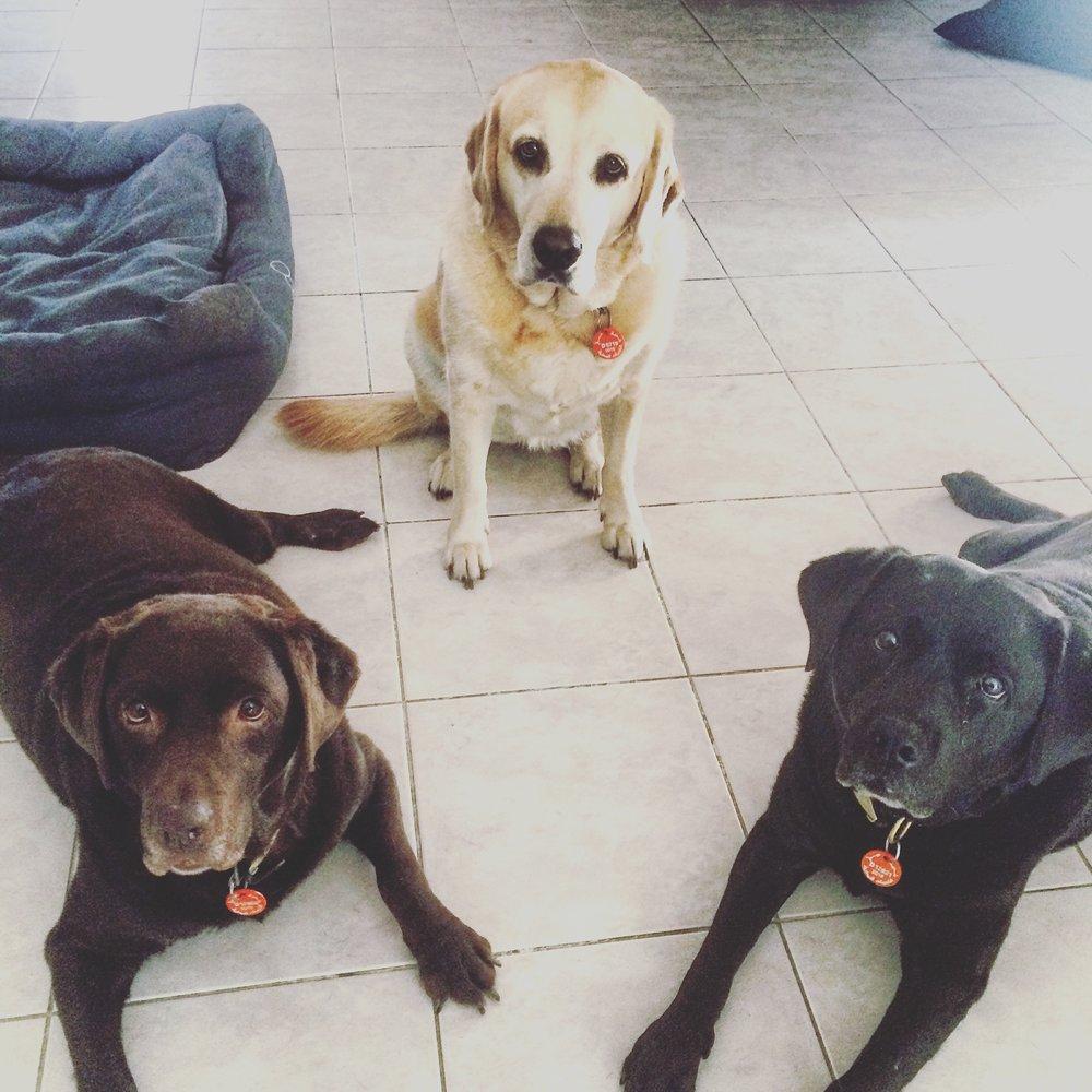 Macie, Kahra & Casey