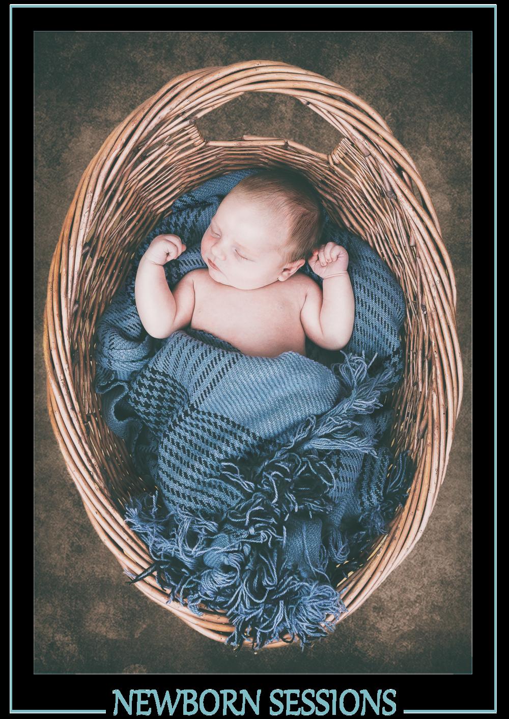 Explore The Newborn Sessions