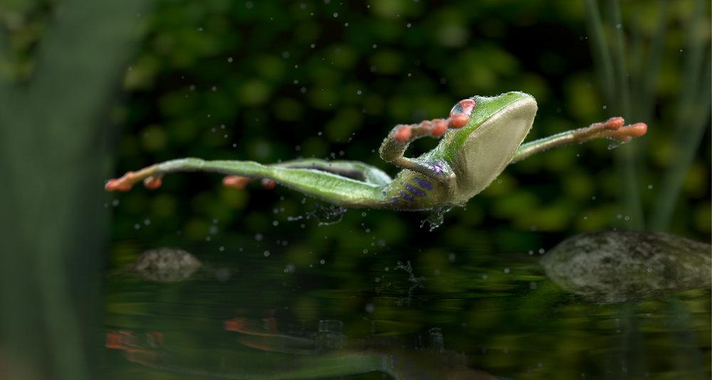 frog_web_col.jpg