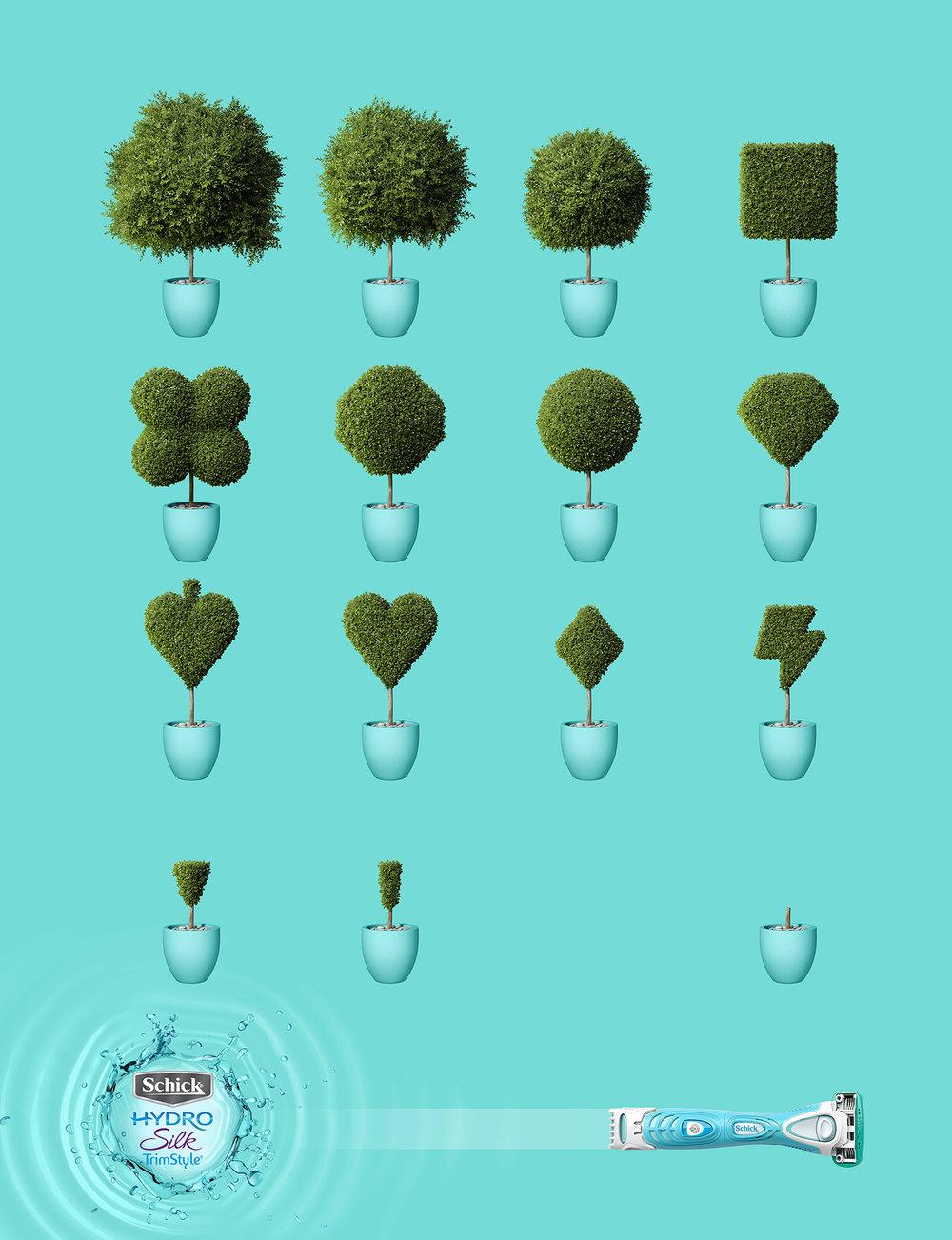 bush3.jpg