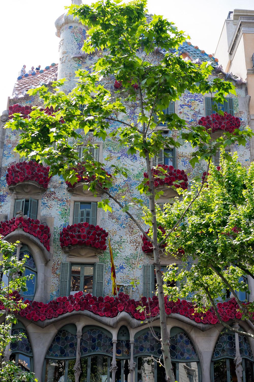 Casa Batlló in a party suit