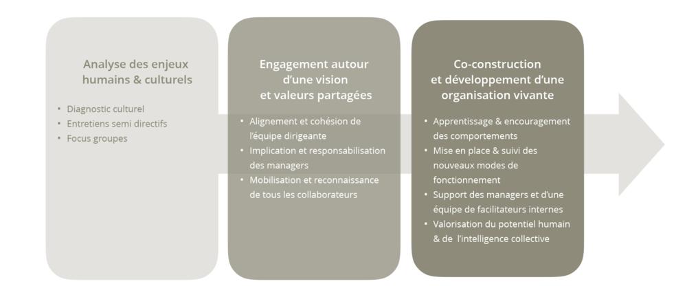 Les 3 étapes d'un projet de transformation culturelle & comportementale : les grandes étapes.