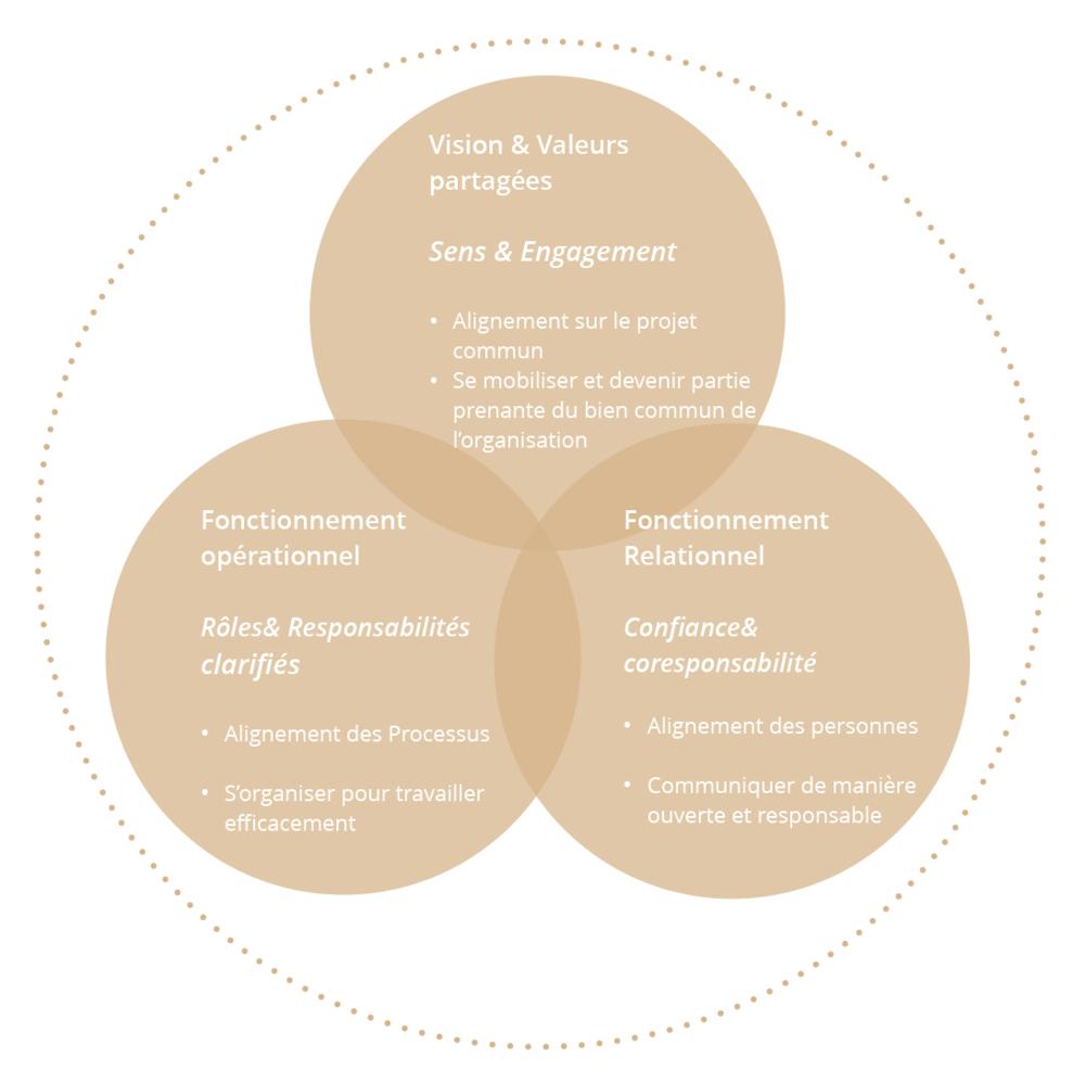 Accompagnement managérial et coaching d'équipe: 3 domaines d'alignement pour un optimum de performances