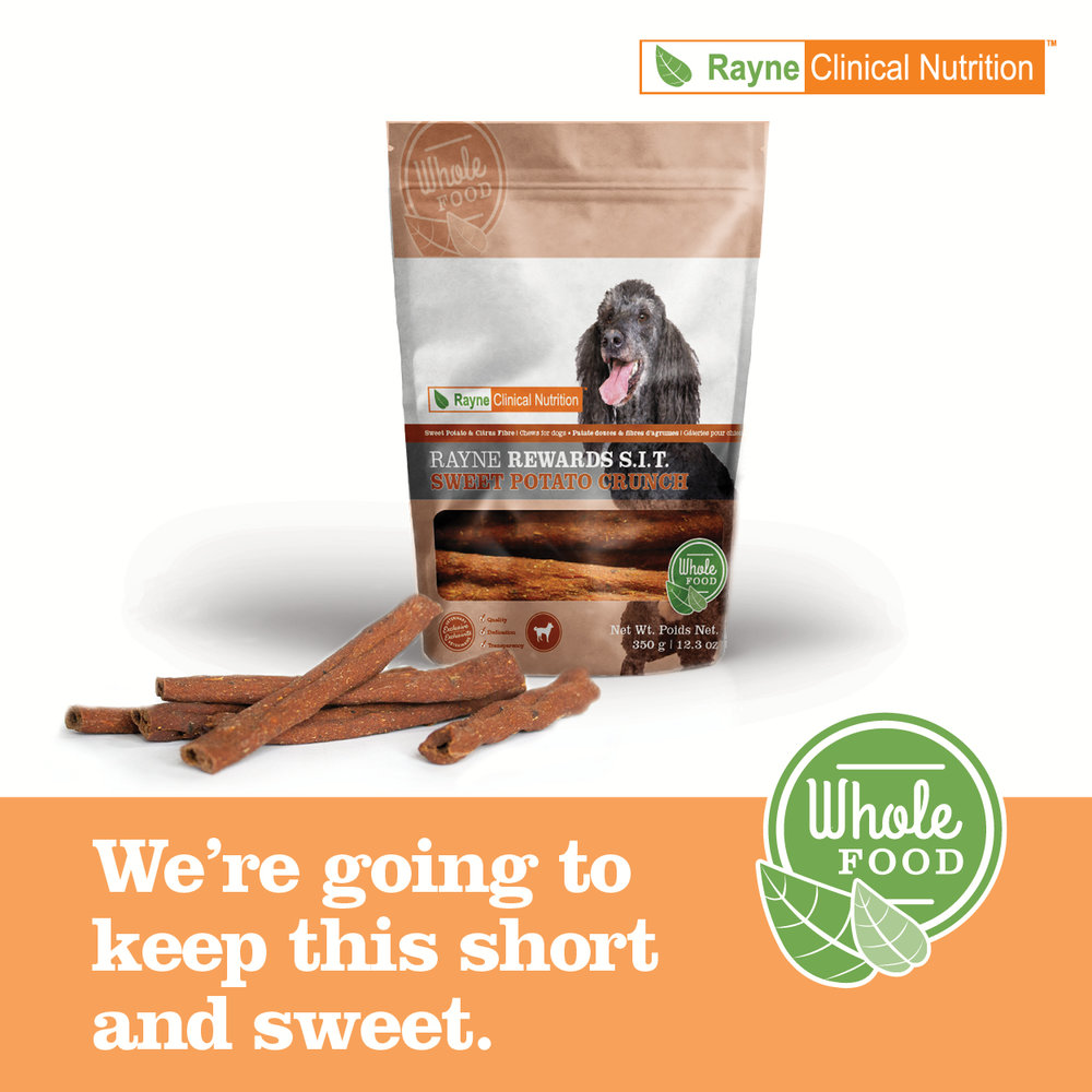 Rayne Rewards Sweet Potato Crunch