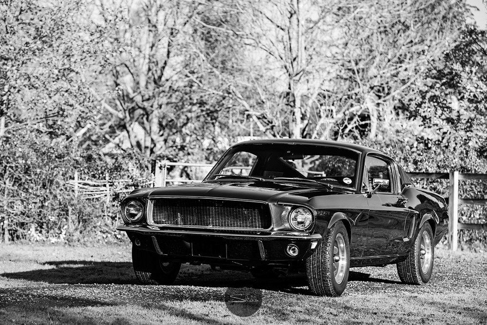 Stella Scordellis Mustang Black & White Watermarked.jpg