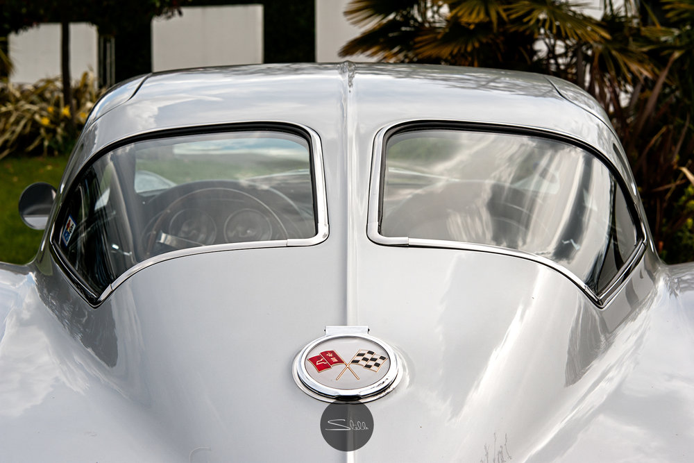 Stella Scordellis Sting Ray Back Windows Watermarked.jpg