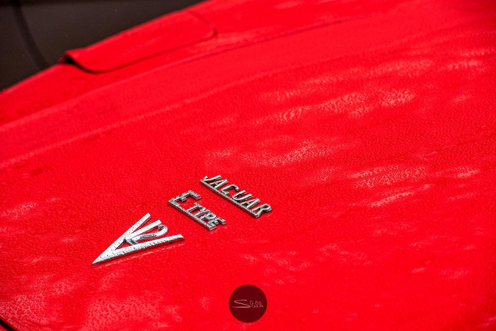 Stella Scordellis Jaguar Car Run 2015 12 Watermarked.jpg