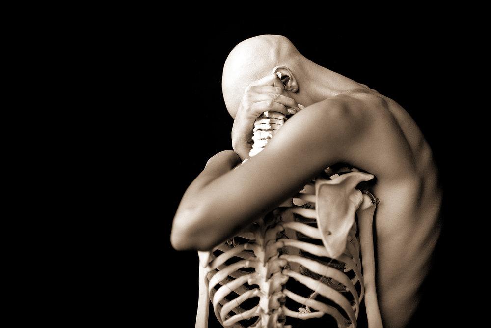 fick skeletonredux.jpg