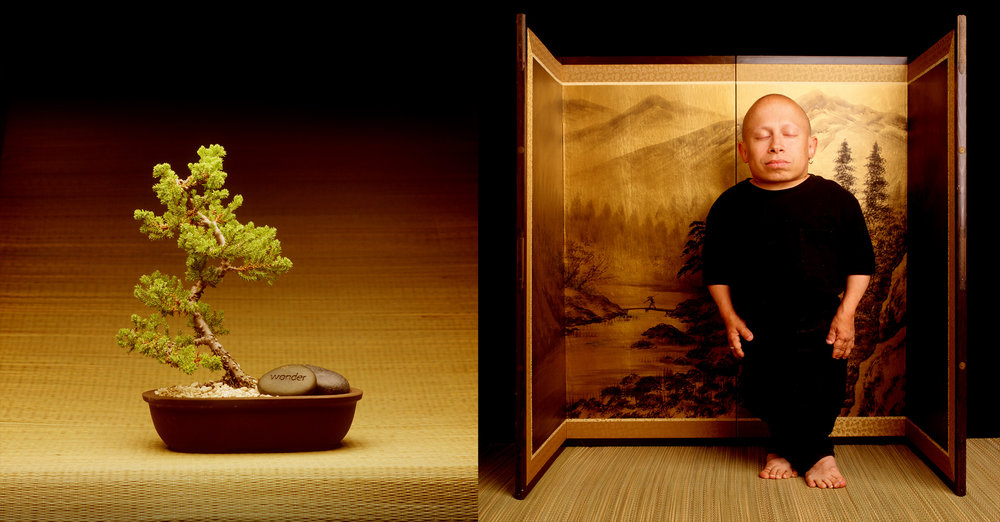 VERNE TROYER_BONSAI.jpg