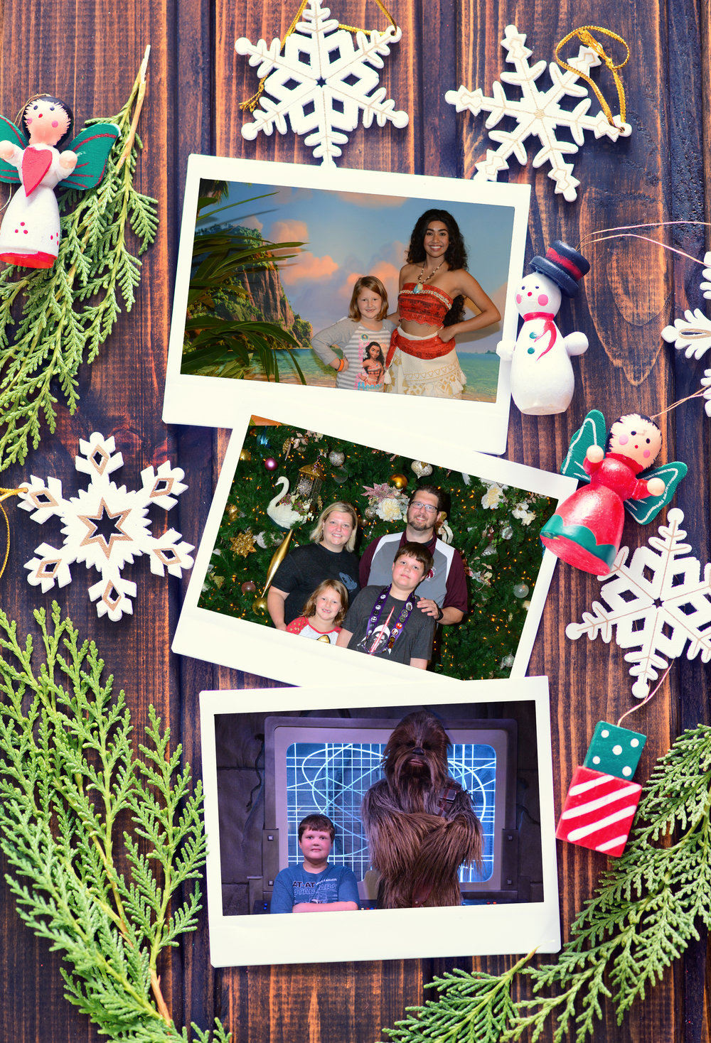 Merry Christmas from Joel, Tracie, Tripp & Chloe!
