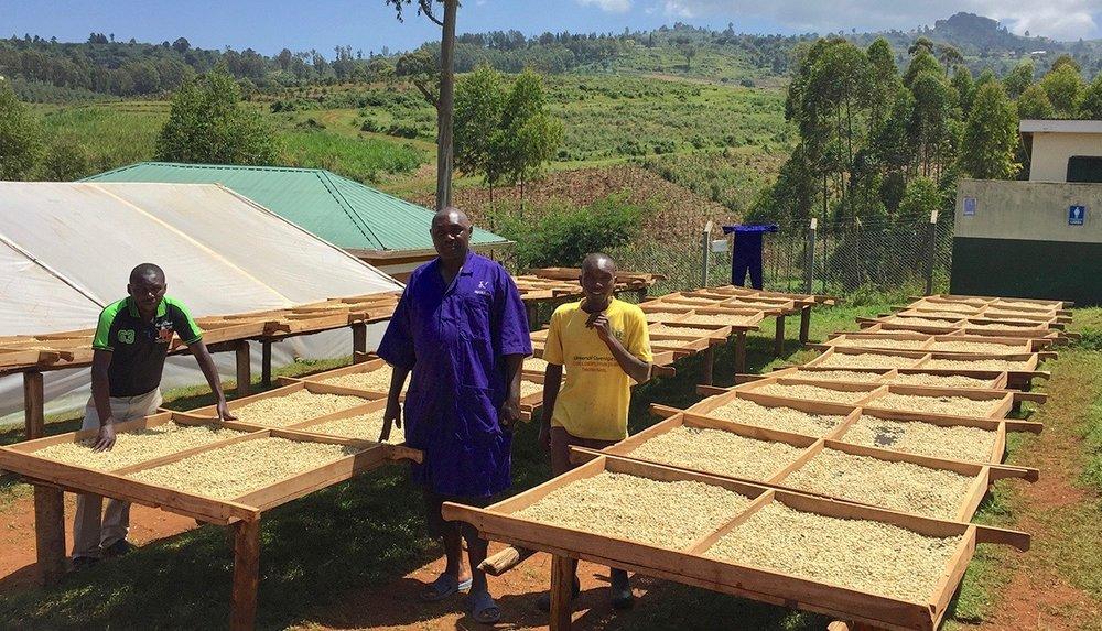 *Photo provided by Genuine Origin Project in Gibuzale, Uganda.
