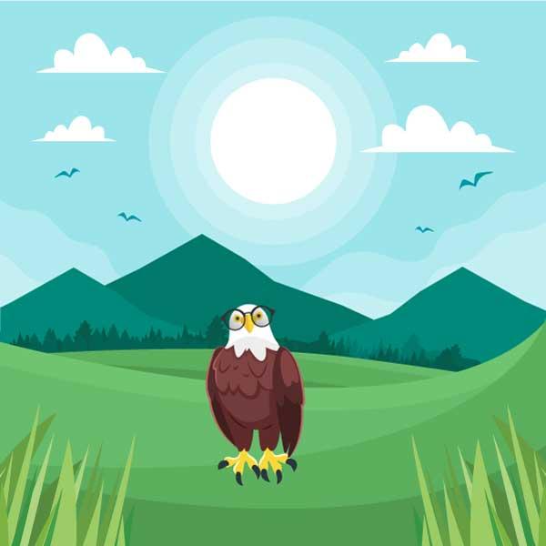 Blue Eagle Sitting on Land