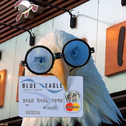 Eagle Wearing Glasses and Holding Blue Eagle Credit Card in His Beak