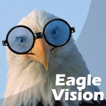 Eagle Wearing Glasses