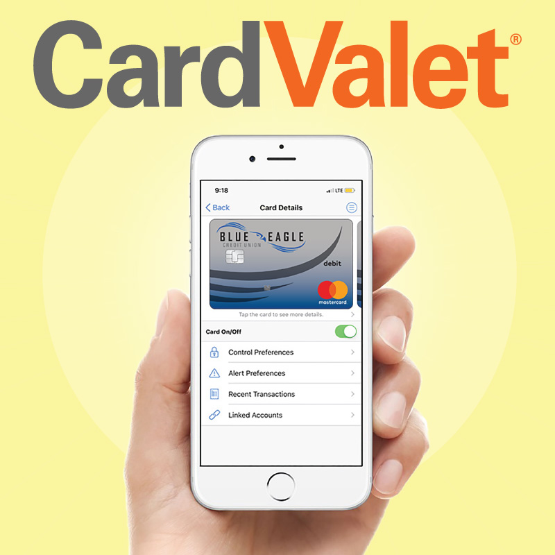 Card Valet Graphic