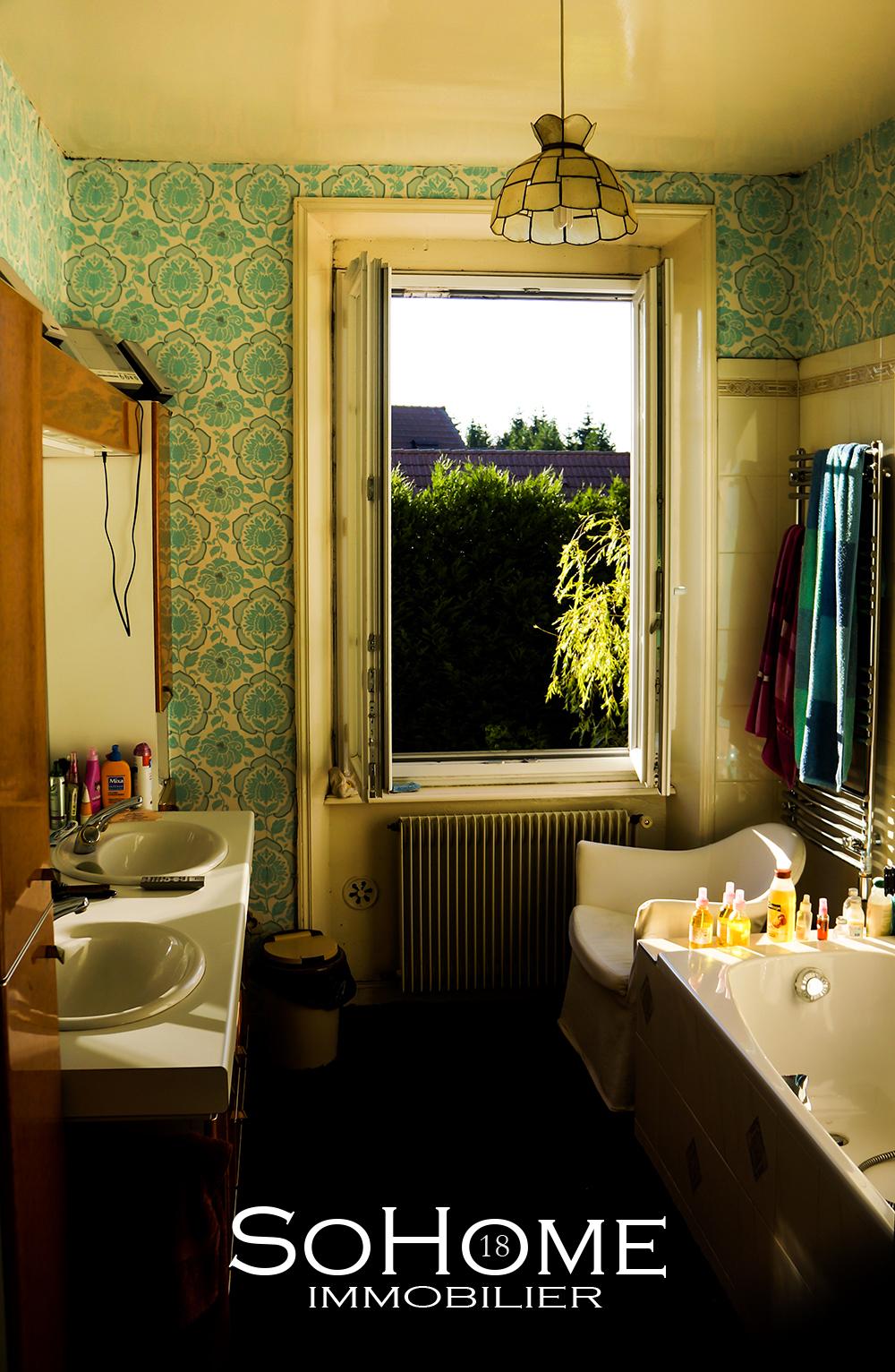 SoHome-LARTISTE-Maison-5.jpg