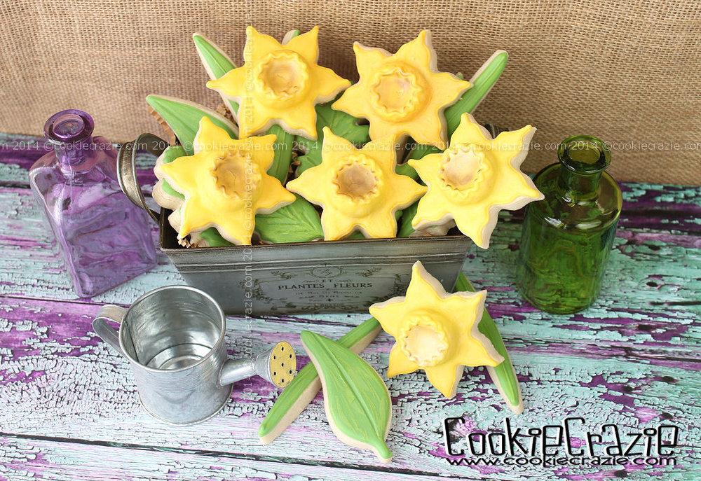 /www.cookiecrazie.com//2014/04/daffodil-cookies-tutorial.html