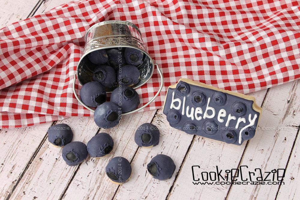 /www.cookiecrazie.com//2014/04/blueberry-cookies-tutorial.html
