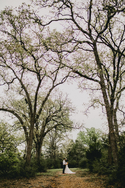 in the trees again-1.jpg
