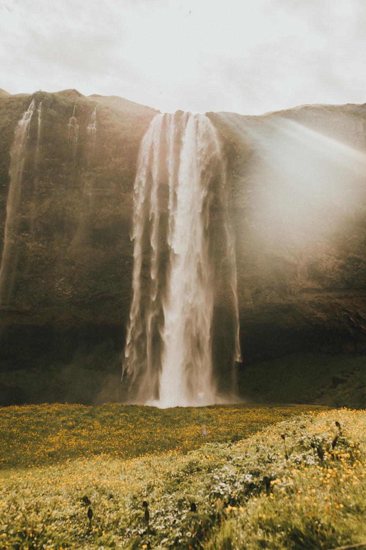 Iceland Southern Coast-173.jpg