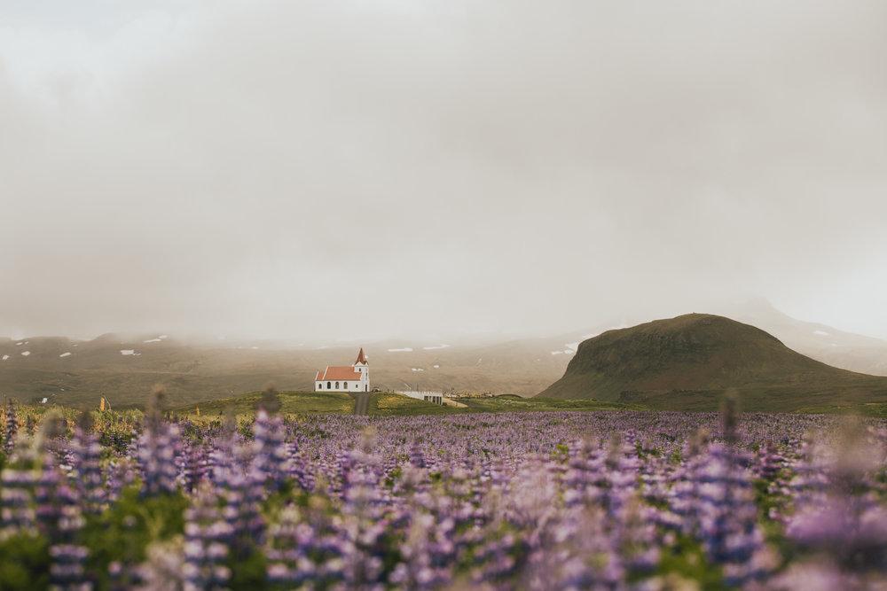 Iceland with Joe-17.jpg