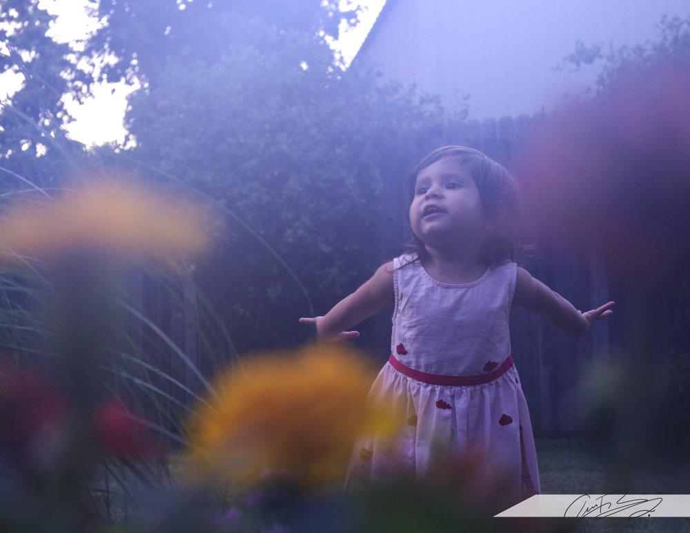 Fairy ZAYZAY.jpg