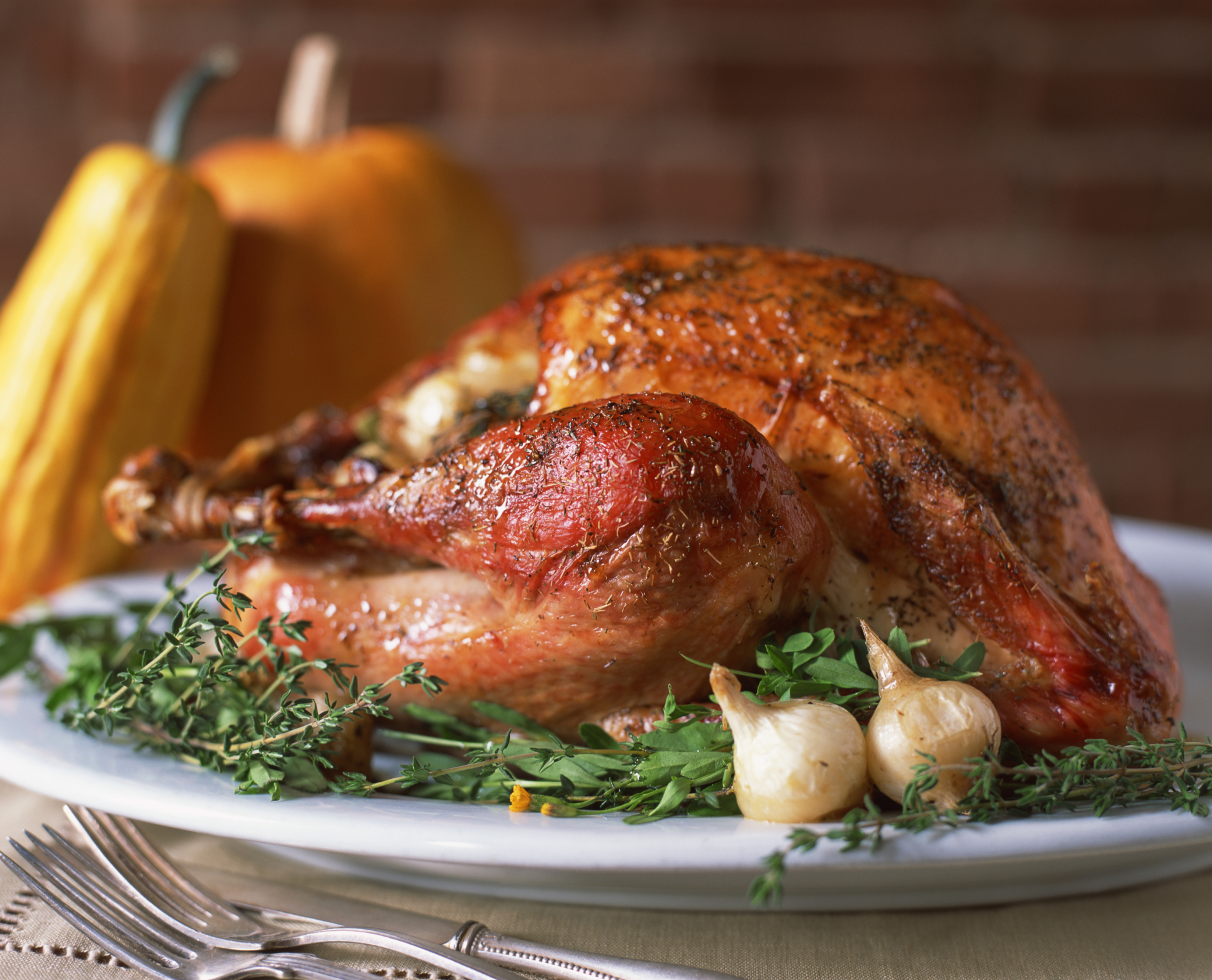 """It's been an honor serving you, Mr. President."" - Turkey (Thinkstock)"