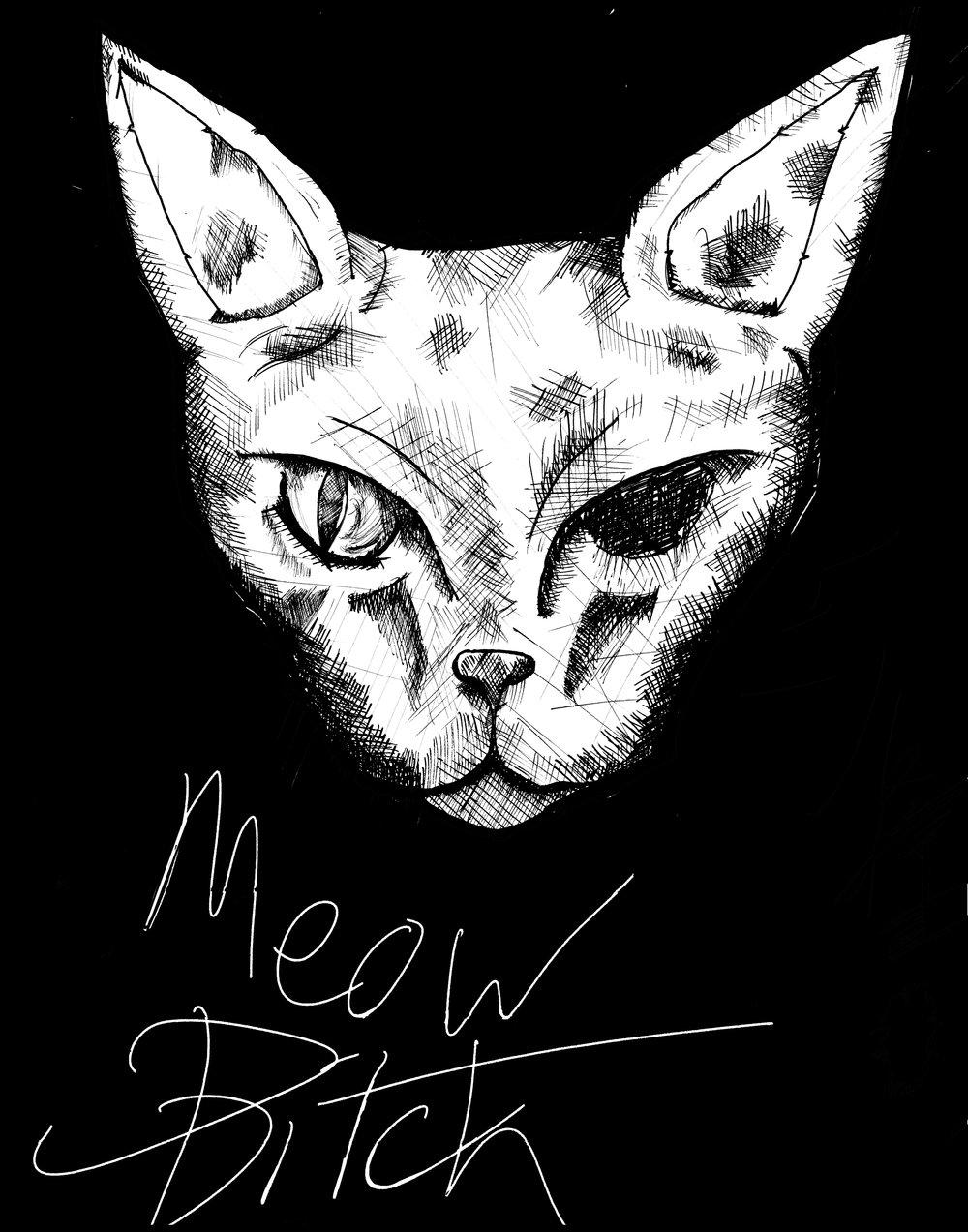 iori_Meow_fvallejo.jpg