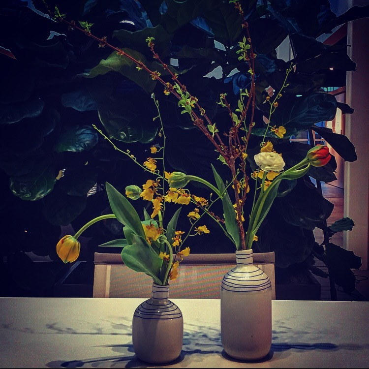 IMG_4512Lumi.Flowers.Ikebana.Doublebudvasesgablesdarkedited.jpg