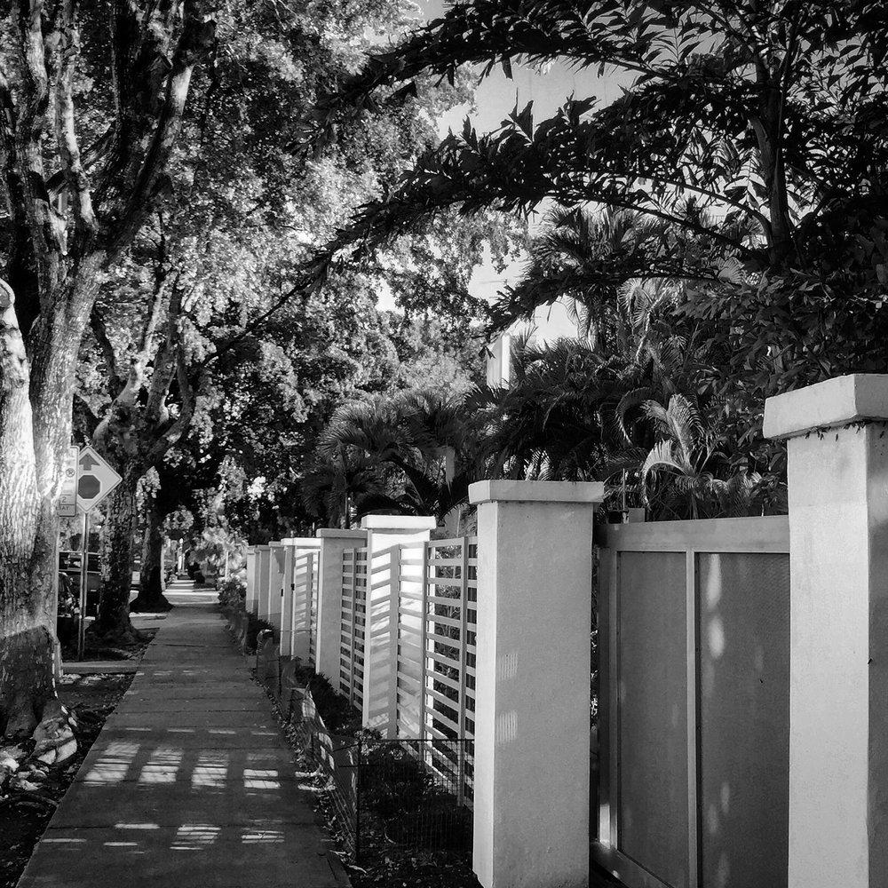 IMG_1436BW.MiamiOutdoorslenoxave.jpg