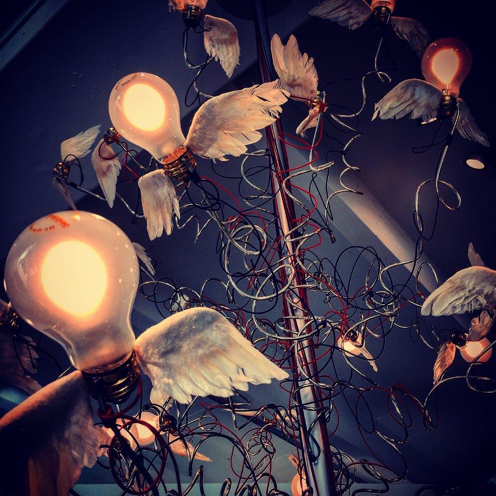 IMG_3519Lumi.BirdsBirdsBirds.jpg