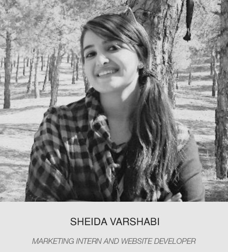 sheida varshabi    Marketing intern and website developer