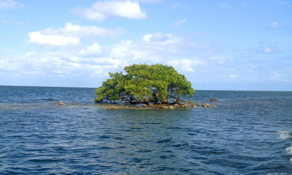 Feng Shui On Land And At Sea -