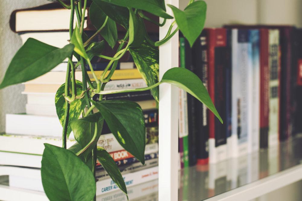 Nature and Interior Design -
