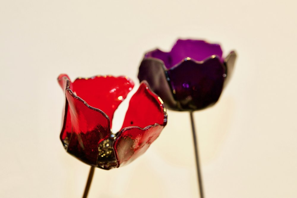 nucleus arts cream rochester glass poppy purple and red