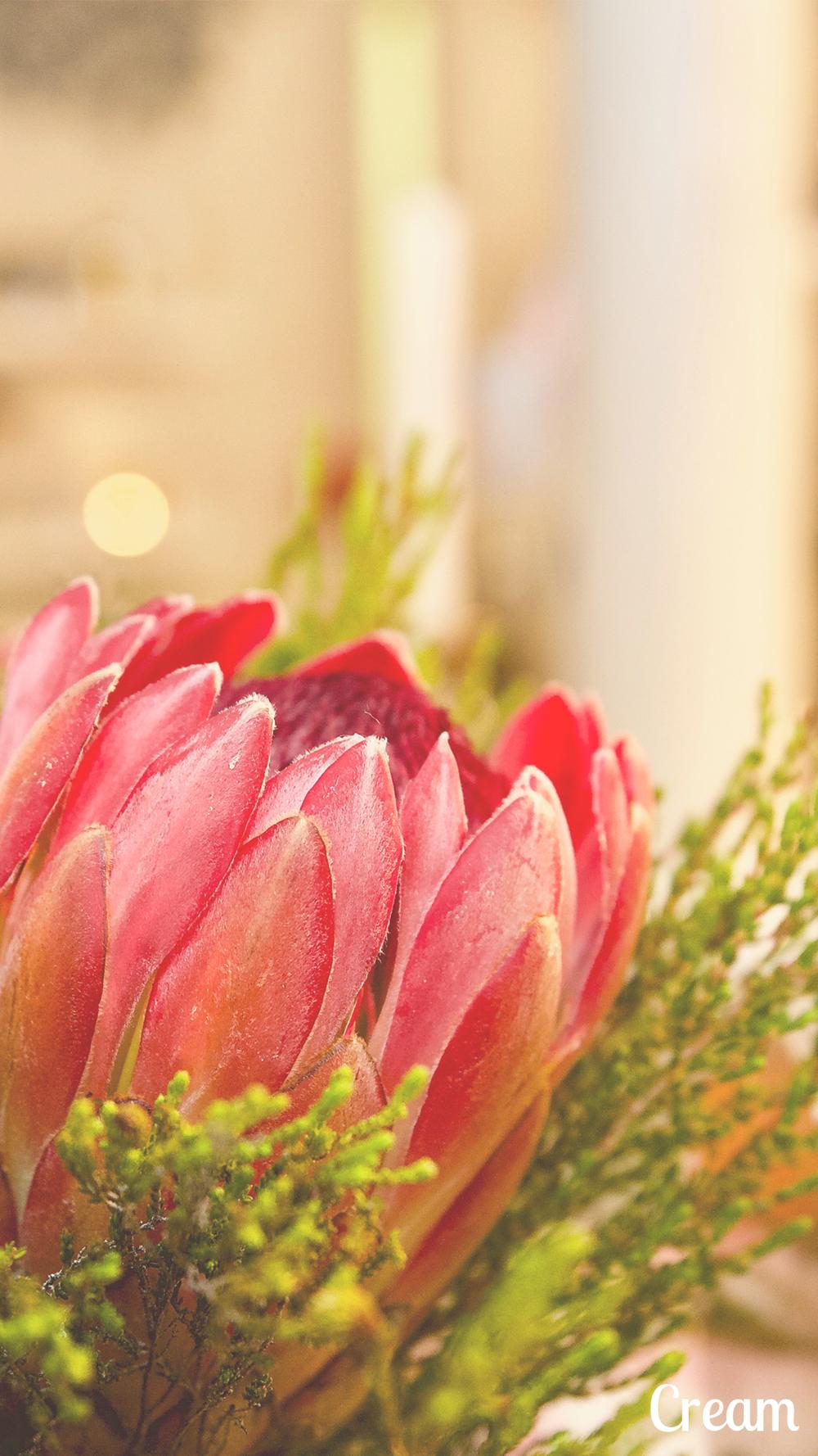 Capture flower pink.png