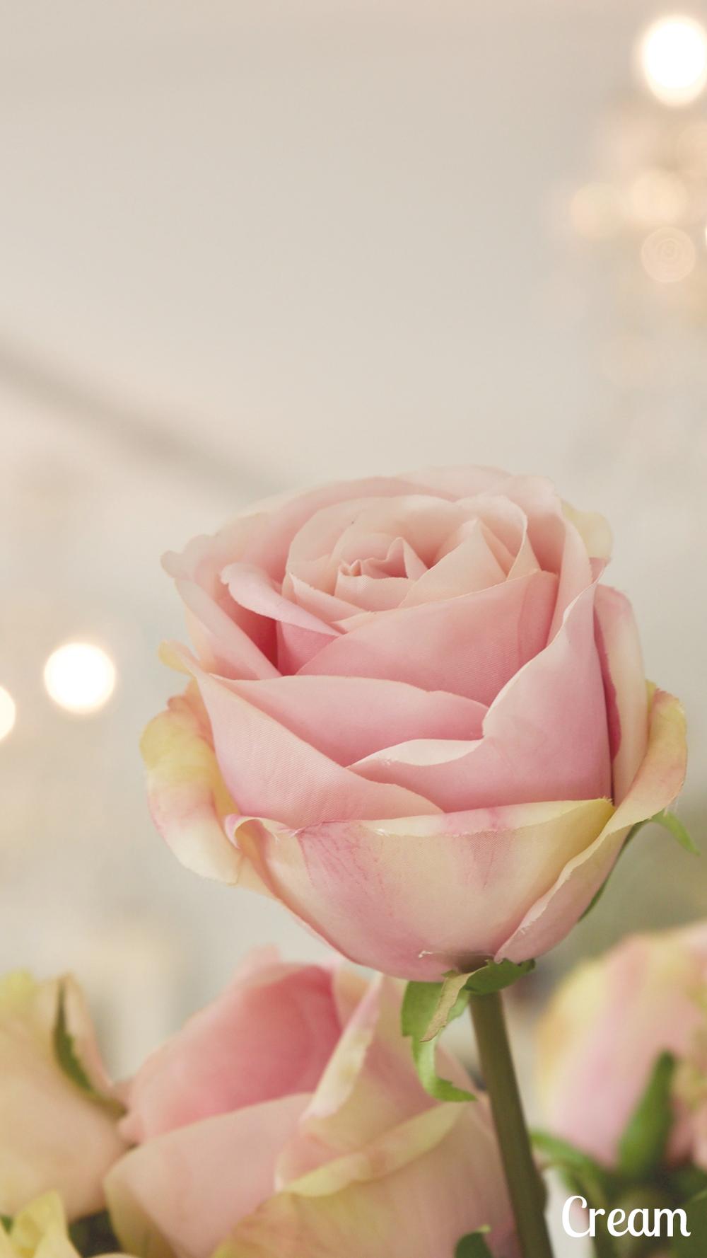 Fleur de The - Cream