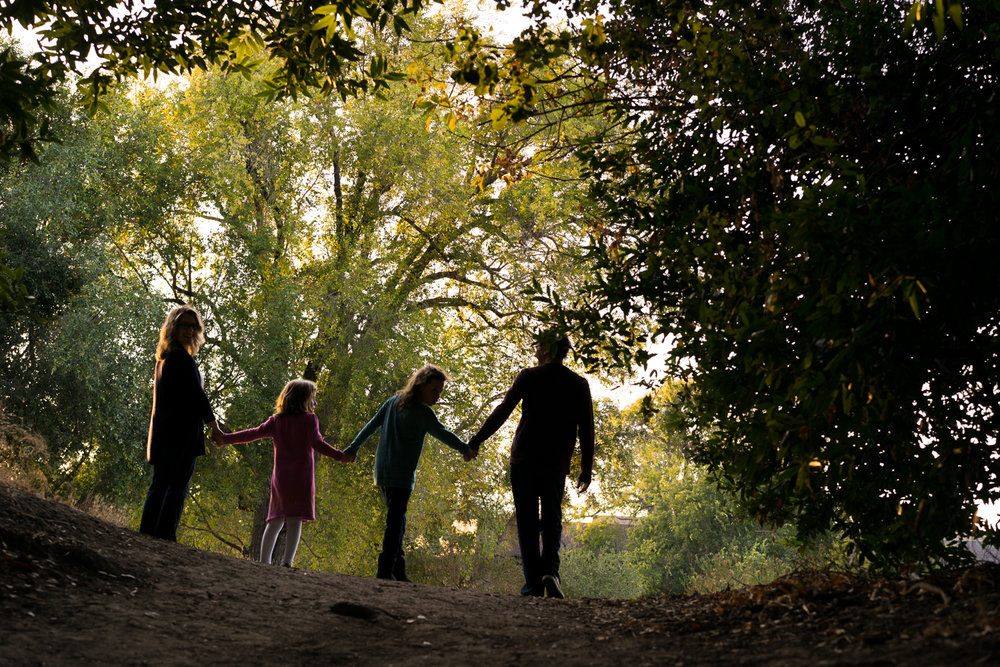 family of four walking along a path-Danville lifestyle photographer