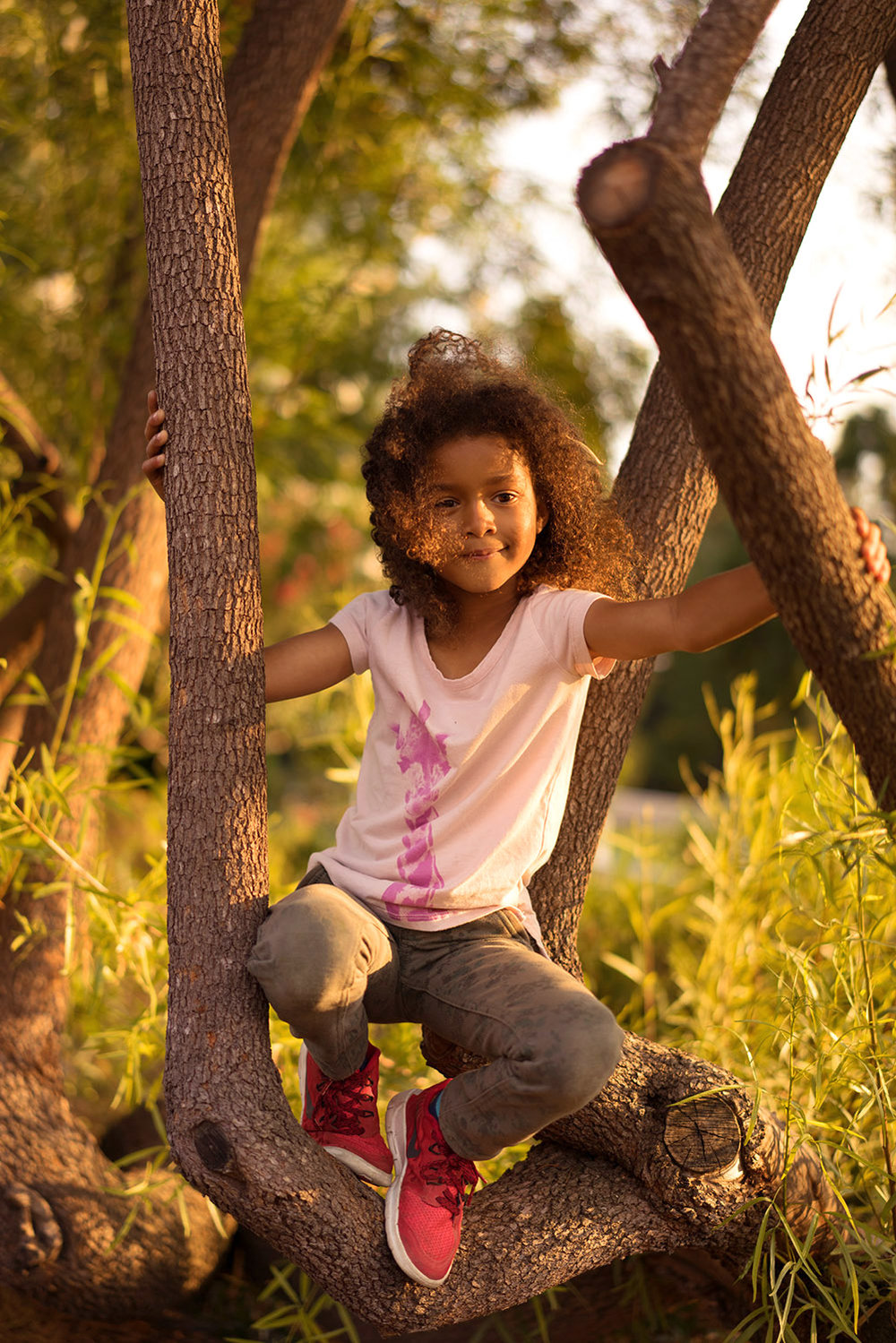 six year old daughter climbs a tree-Danville children's outdoor photograph