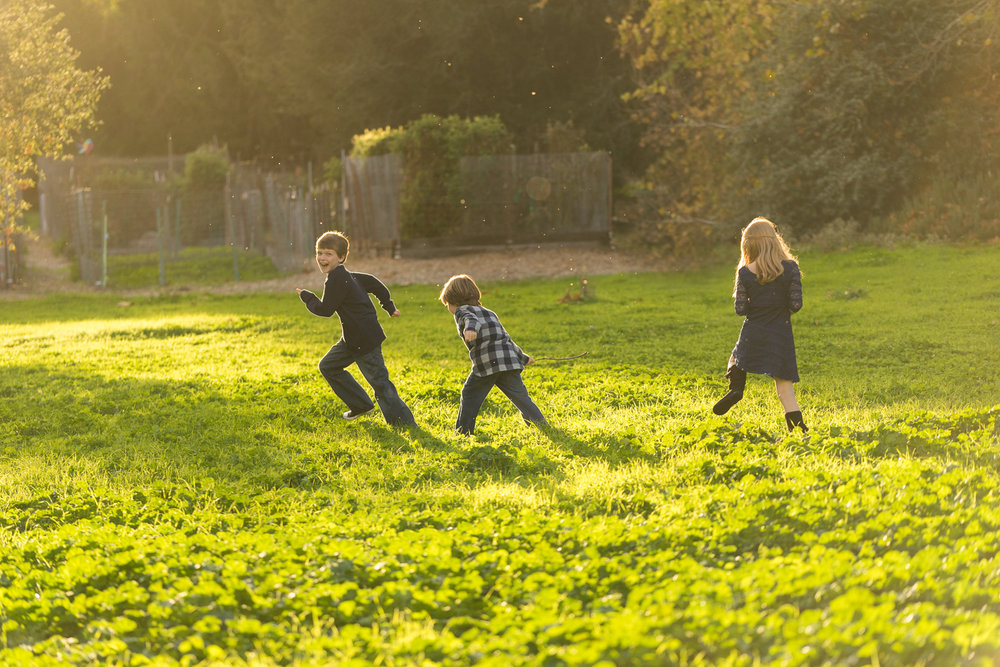 sister and two brothers playing in the gardens-San Ramon children's photographer