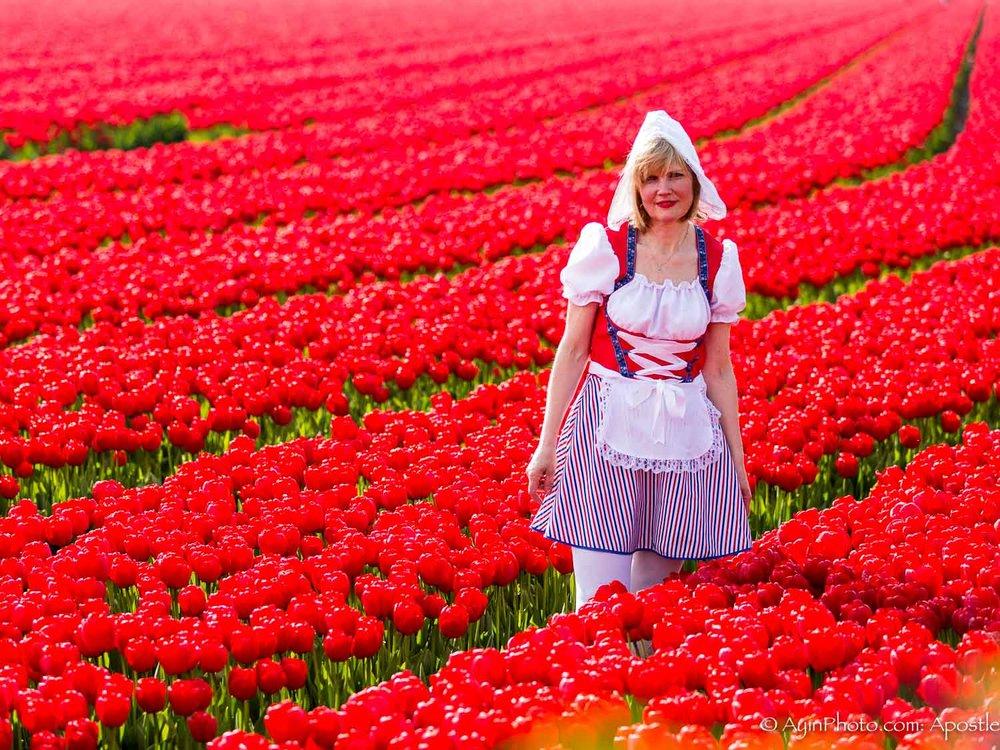 Tulip-3676.jpg