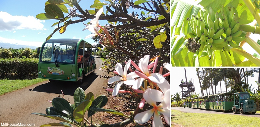 Maui Tropical Plantation Tram Ride