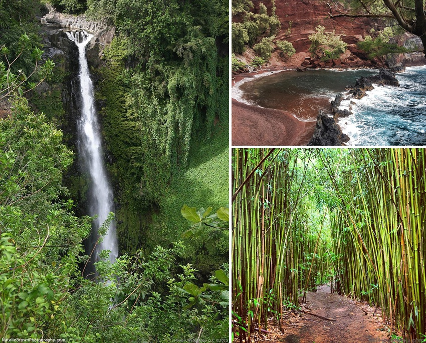 what makes hawaii the best