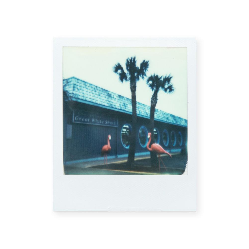 Myrtle Beach Polaroid_© Rachael Wright.jpg